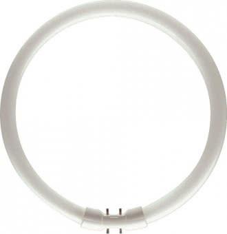 PHIL L-Lampe TL5-C 22W-840